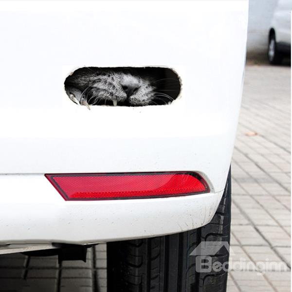 3d Angry Cat Face Car Stickers Feel Good Mattress